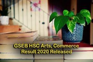 GSEB HSC Arts, Commerce Result 2020 Released